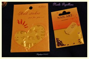 lot nails papillons 2 (2) bis