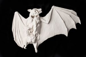 kate_macdowell_bat_black.jpg