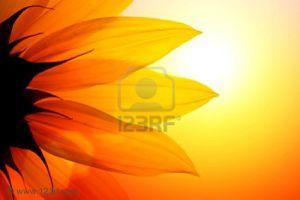 4691599-detalle-de-la-puesta-de-sol-sobre-el-cielo-de-giras