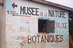 2.-Musee.jpg