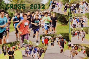 cross2012G (Copier)