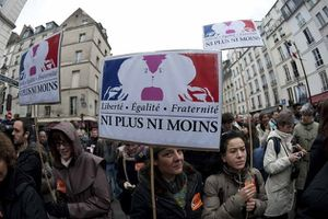 manifestation-mariage-pour-tous-gay-reuters-930620 scalewid