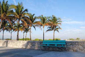 Floride-2010 0049