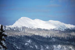 20100219 paysages d'hiver