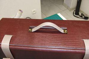 valise-anette2.JPG
