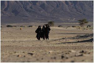 Mauritanie humanitaire 2013 (5)