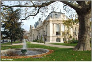 Petit Palais Paris nature