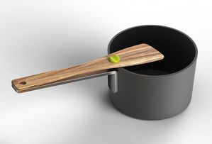 Flip-utensil-on-pan.jpg