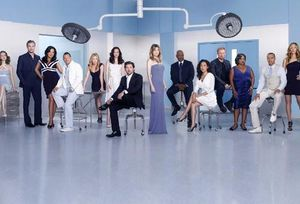363-greys-anatomy-season7-cast-02.jpg