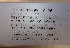 piss braille