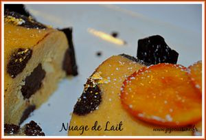 buche-tigree-chocolat-orange.JPG