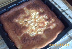 gateau-au-yaourts-et-pommes.JPG
