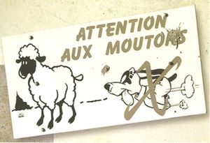 attention-moutons.jpg