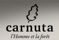Carnuta