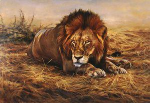 le-lion.jpg