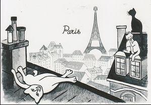 chat-paris.jpg