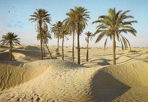 désert perdition