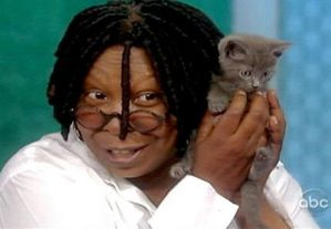 whoopi goldberg chaton article big