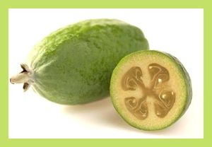 feijoa fruit pf