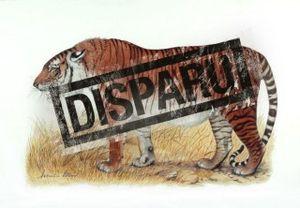 tigre-caspien.jpg