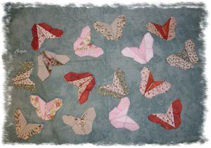 papillons de Najelo