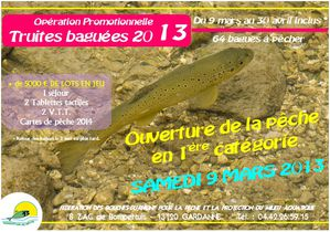 TRUITES BAGUEES 2013