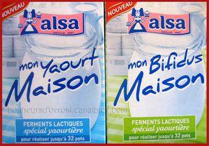 2010.07.19 yaourts maison