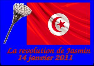 festival-de-vina-Tunez-conflicto-gaddafi-egipto-libia.png