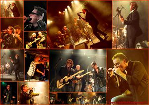 chillidogs-spectacle-mosaique.jpg