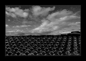Paysages-electroniques-c-Olivier-Roberjot-04.jpg