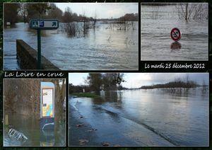 2012 12 25 Scrap.La Loire en crue