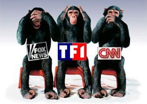 medias-monkeys.jpg