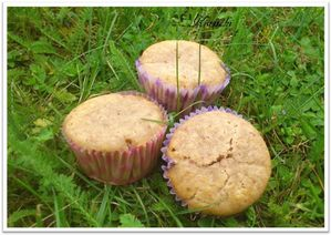 Muffins-a-la-fraise-2.JPG