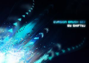 b-evasion brush set