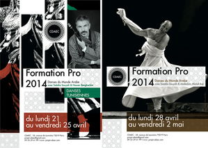 cdaec_stages-pro_2014.png