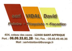 DAVID-SCAN-CARTE-PRO.jpg