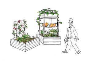 Jardin Potager IO modul-ATalin Paysage