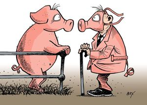 pigs-cartoon.jpg