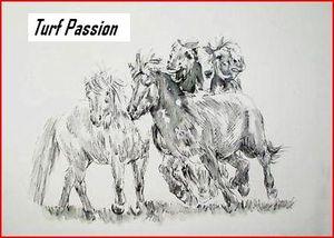turf-passion.JPG