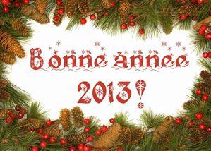 Bonne-Annee-2013[1]