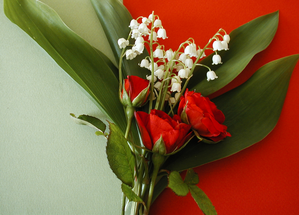 Capture-rose-et-muguet.PNG