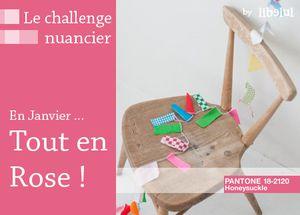 le-challenge-nuancier-janvier-by-libelul.jpg