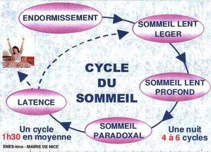 CYCLES-SOMMEIL1.jpg