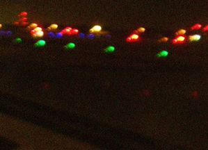 babou janvier2010 080 tres petite