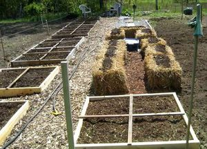 NATURES - Culture sur paille StrawBaleGarden (10.5)