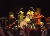 iggy-pop-fourviere.jpg