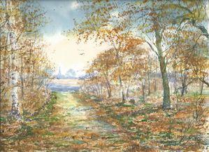 paysage-automne-vkg-nov-2012.jpg