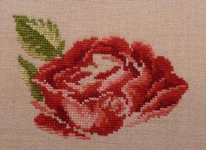 Une nouvelle Rose de Véronique Enginger P1040083
