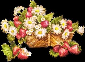 gif fraises 3