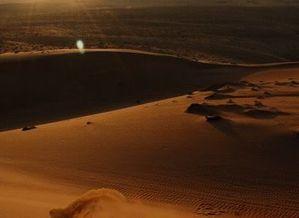 désert 15